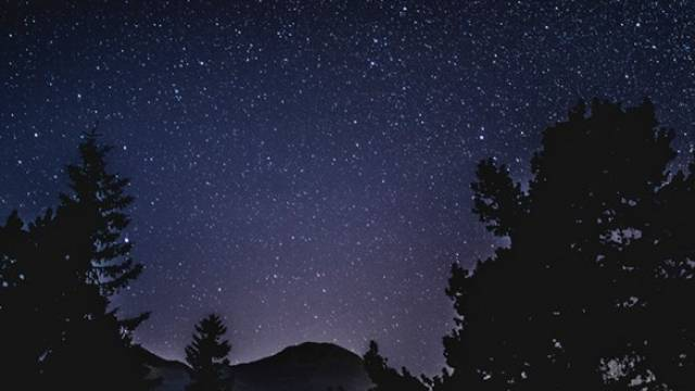Photo of a starry night sky framed by the silouettes of forest trees and a distant mountain.