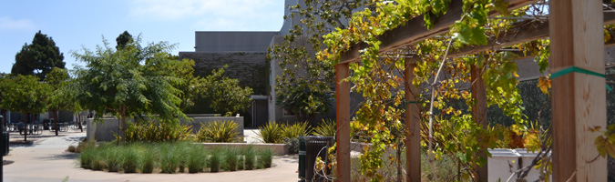 SMC Organic Learning Garden