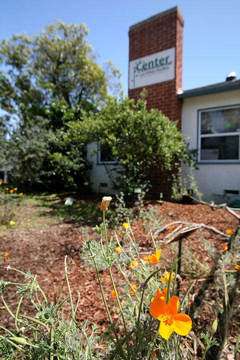 Native California Garden at The Center for Environmental and Urban Studies