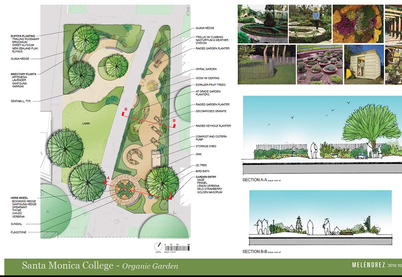 Illustration of SMC Organic Garden